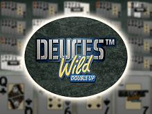 Обзор игрового автомата euces Wild